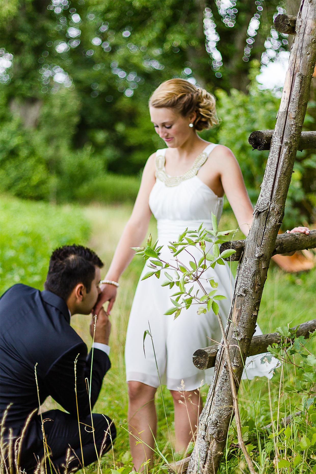 Hochzeitsfotografie Annette Dahlke in Neuburg